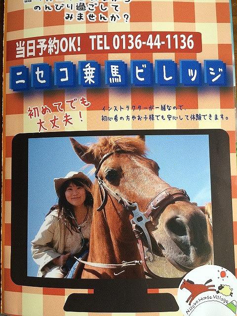 niseko-horse