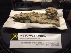 ティラノ糞化石