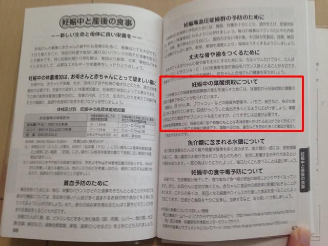 母子手帳の葉酸ページ