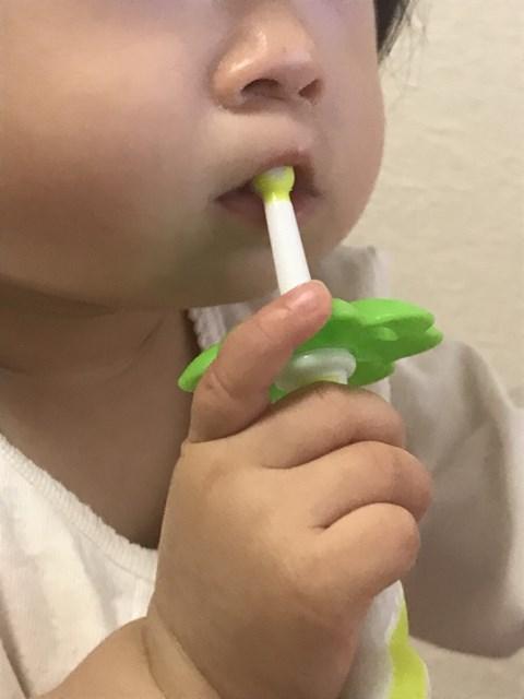 生後8~12ヶ月頃歯ブラシ